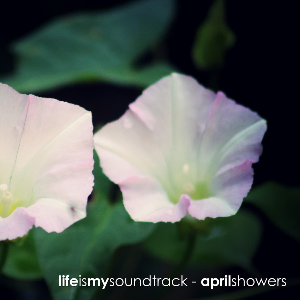 The album April Showers by Life Is My Soundtrack - Light, delicate, minimal piano melodies