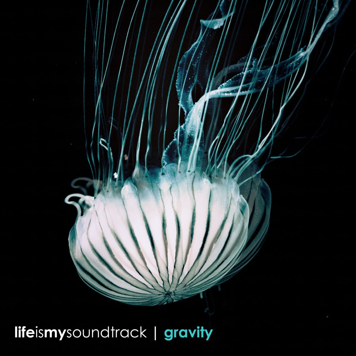 The album Gravity by Life Is My Soundtrack - Let the gravity wash over you