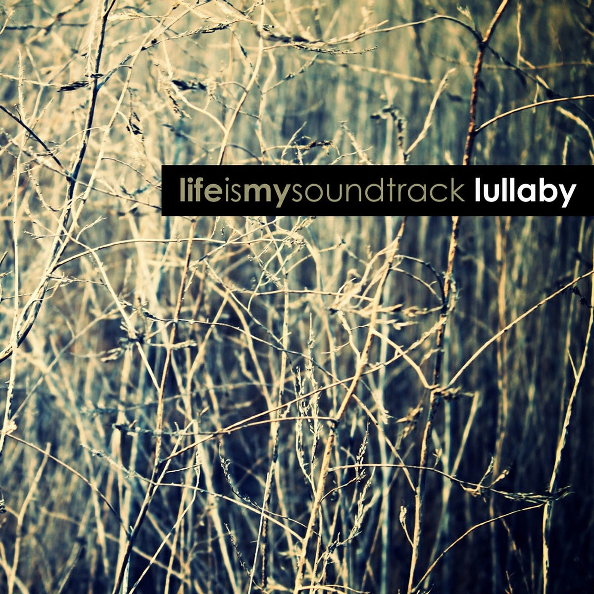 The album Lullaby by Life Is My Soundtrack - Revisit fond memories of childhood, or make new ones with Life Is My Soundtrack's rendition of Brahms Lullaby