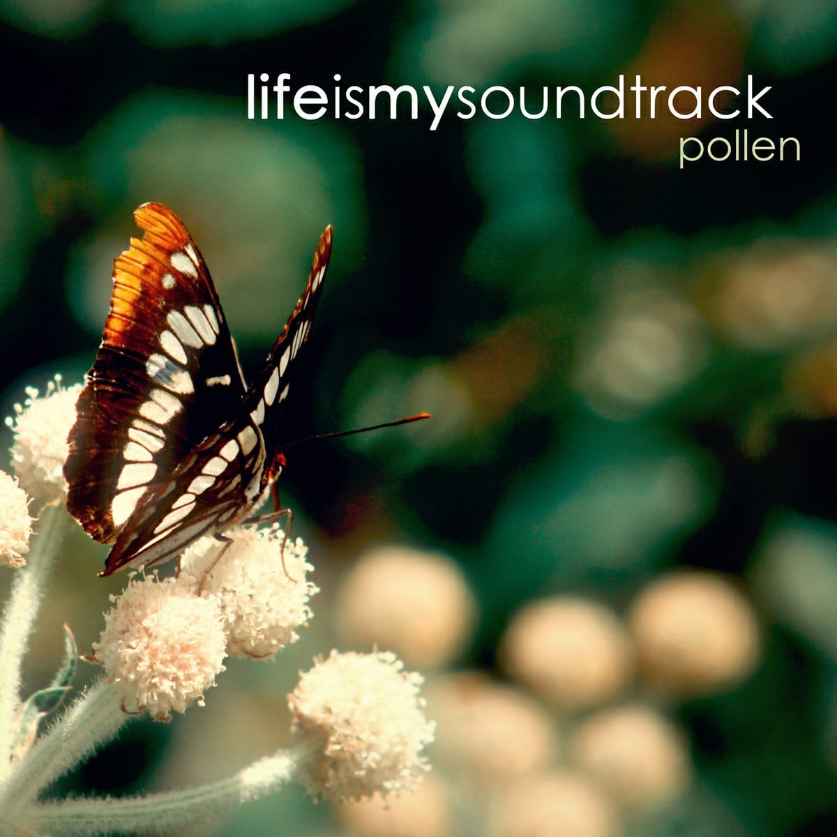 The album Pollen by Life Is My Soundtrack - Light, uplifting songs to take you away