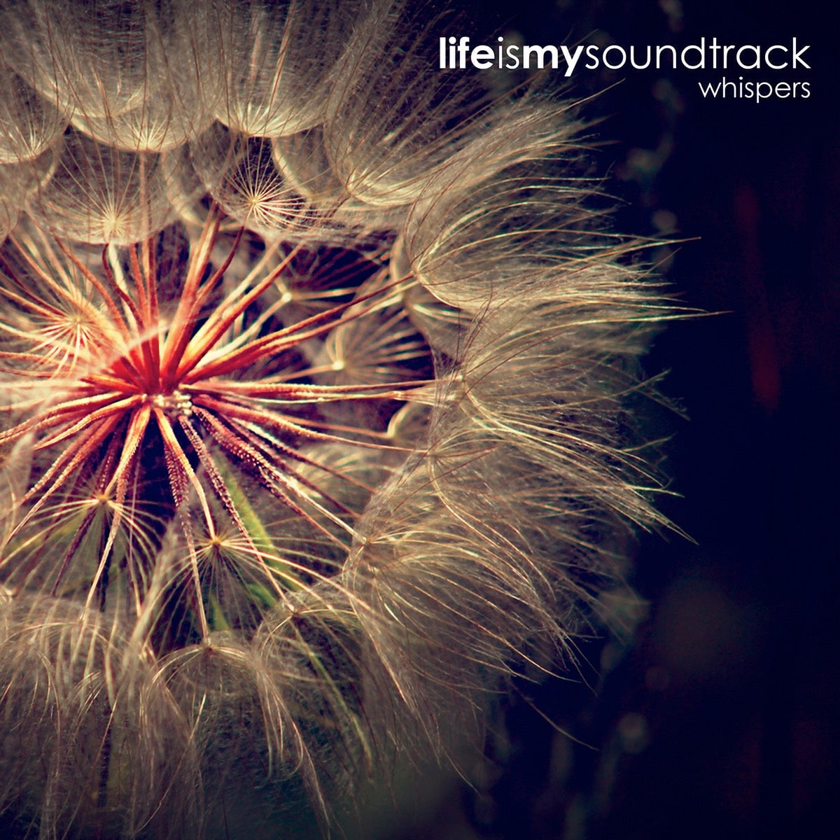 The album Whispers by Life Is My Soundtrack - A duo of delicate, minimalist songs that combine to evoke the sounds of quiet whispers